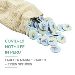 Chill n Feel - COVID-19 Nothilfe Peru_Faultier Magnete