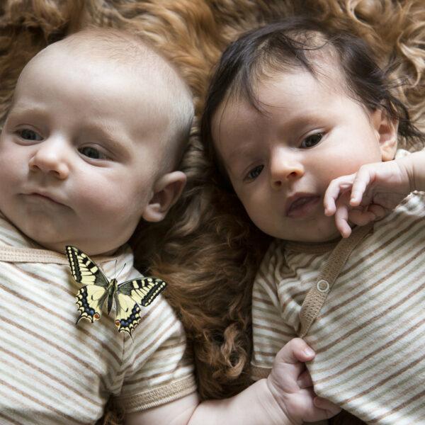 Chill n Feel - Kurzarm-Kimono Baby Body aus Pima Bio-Baumwolle Gestreift (2)