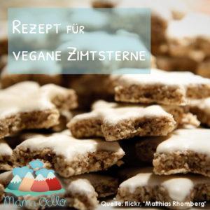 Rezept Vegane Backrezepte Zimtsterne (2)