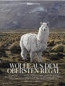 Wolle aus dem obersten Regal - Brigitte 2015 - Nachhaltige Wolle (1)