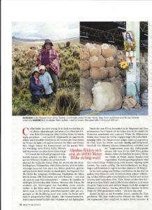Wolle aus dem obersten Regal - Brigitte 2015 - Nachhaltige Wolle (2)