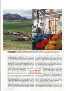 Wolle aus dem obersten Regal - Brigitte 2015 - Nachhaltige Wolle (4)