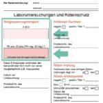 Den Mutterpass verstehen (1) | Die Blutgruppenzugehörigkeit