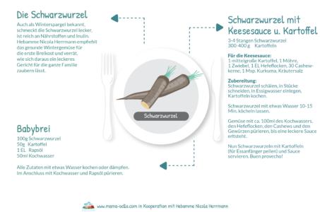 Die Schwarzwurzel Rezepte Beikost Familienküche Hebamme (2)