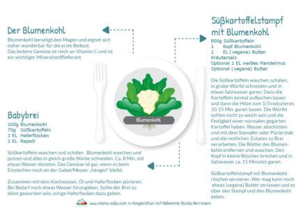 Hebammen-Rezepte-für-Beikost-und-Familienküche-mit-dem-Blumenkohl