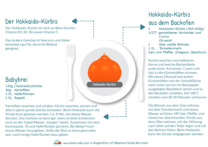 Hebammen-Rezepte-für-Beikost-und-Familienküche-mit-dem-Hokkaido-Kürbis