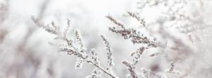 Chill n Feel - Baby im Winter richtig anziehen_Dezemberbaby