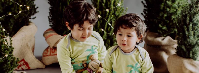 Chill n Feel - Weihnachtsbaum im Topf_Christbaum kaufen