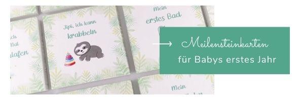 Meilensteinkarten für Babys erstes Jahr