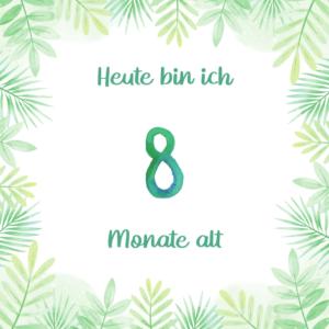 Baby Meilensteinkarte 8 Monate alt