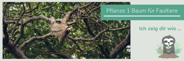 Bäume pflanzen im Amazonas_Bio Kleidung u. Kuscheltiere