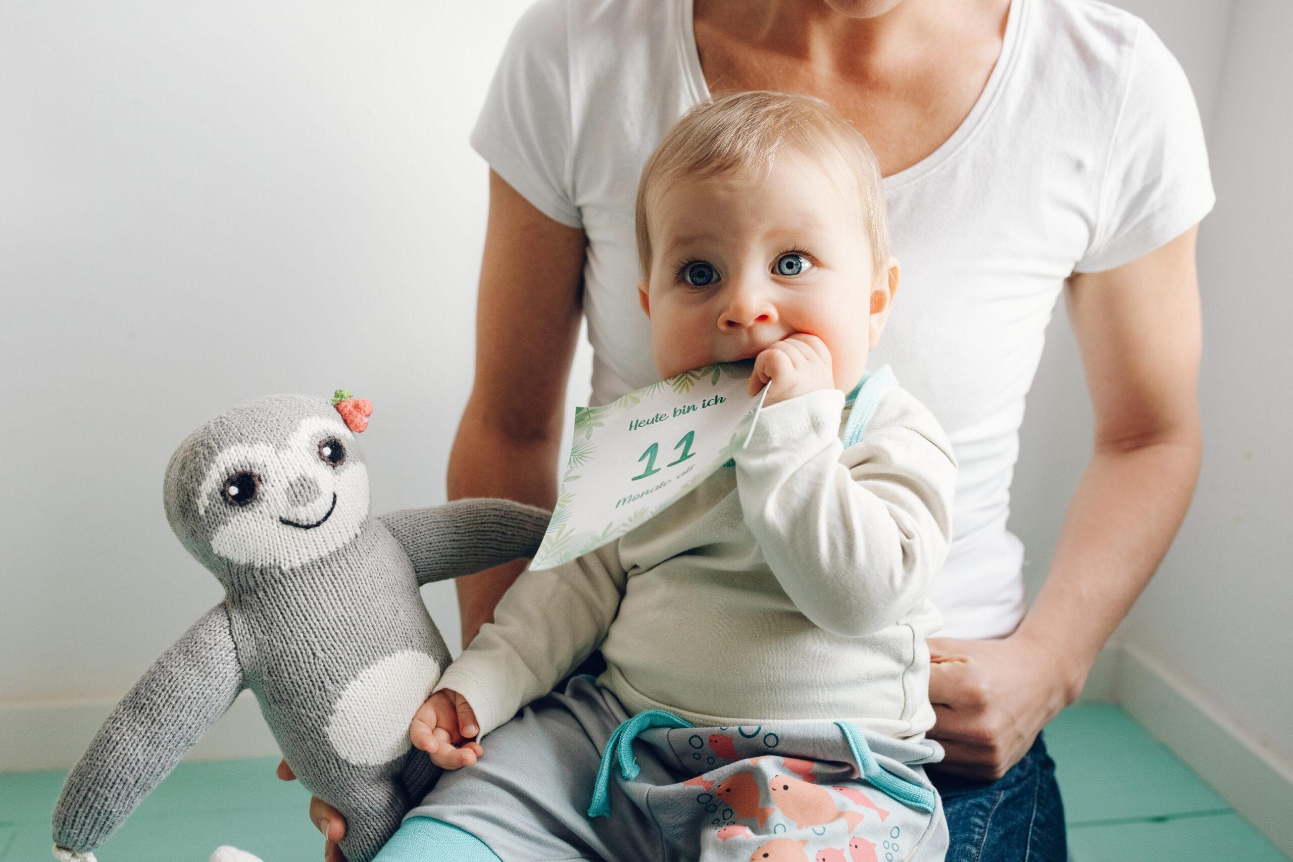 Faultier Geschenke_Baby Meilensteinkarten (2)