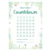 Meilensteine Schwangerschaft_Baby Countdown